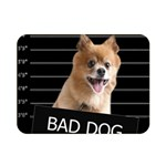 Bad dog Double Sided Flano Blanket (Mini)  35 x27 Blanket Back