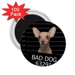 Bad dog 2.25  Magnets (100 pack)
