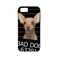 Bad Dog Apple Iphone 5 Classic Hardshell Case (pc+silicone)