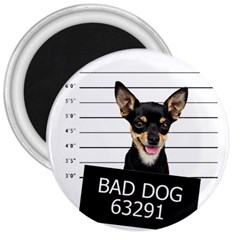 Bad dog 3  Magnets