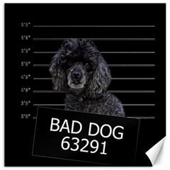 Bad dog Canvas 20  x 20