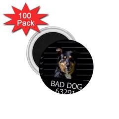 Bad dog 1.75  Magnets (100 pack)
