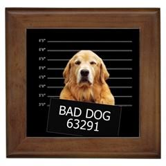 Bad dog Framed Tiles
