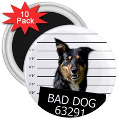 Bad dog 3  Magnets (10 pack)