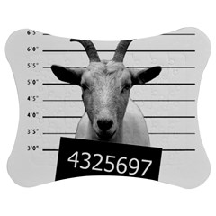 Criminal goat  Jigsaw Puzzle Photo Stand (Bow)