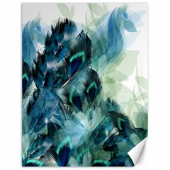 Flowers And Feathers Background Design Canvas 12  x 16