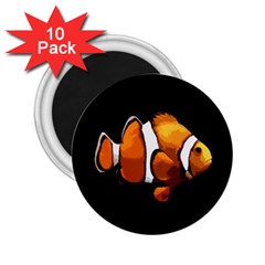 Clown fish 2.25  Magnets (10 pack)