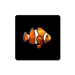 Clown fish Square Magnet