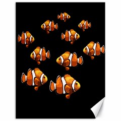 Clown fish Canvas 18  x 24