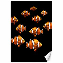 Clown fish Canvas 20  x 30