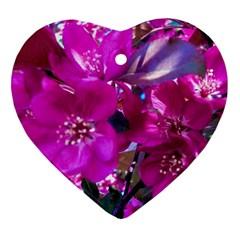 Pretty In Fuchsia Ornament (Heart)