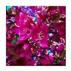 Pretty In Fuchsia 2 Tile Coasters
