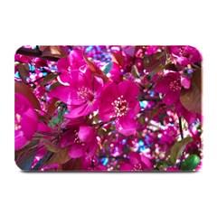 Pretty In Fuchsia 2 Plate Mats