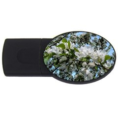 Pure And Simple 2 USB Flash Drive Oval (1 GB)