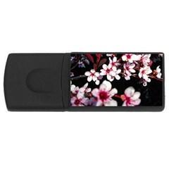 Morning Sunrise 2 USB Flash Drive Rectangular (2 GB)
