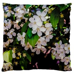 Tree Blossoms Large Flano Cushion Case (One Side)