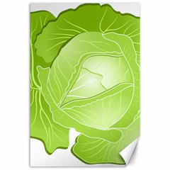 Cabbage Leaf Vegetable Green Canvas 24  x 36