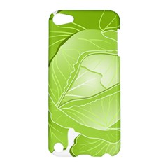 Cabbage Leaf Vegetable Green Apple Ipod Touch 5 Hardshell Case