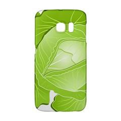 Cabbage Leaf Vegetable Green Galaxy S6 Edge