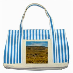 Group Of Vicunas At Patagonian Landscape, Argentina Striped Blue Tote Bag