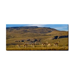 Group Of Vicunas At Patagonian Landscape, Argentina Cosmetic Storage Cases