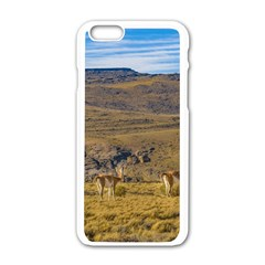 Group Of Vicunas At Patagonian Landscape, Argentina Apple iPhone 6/6S White Enamel Case