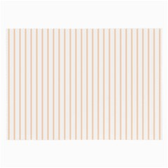 Soft Peach Pinstripe on White Large Glasses Cloth (2-Side)