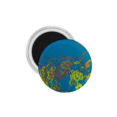 Colors 1.75  Magnets