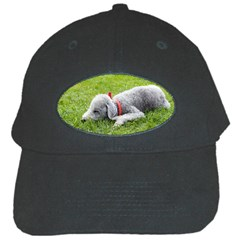 Bedlington Terrier Sleeping Black Cap