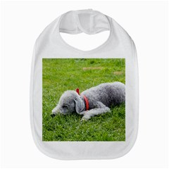 Bedlington Terrier Sleeping Amazon Fire Phone