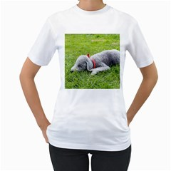 Bedlington Terrier Sleeping Women s T-Shirt (White) (Two Sided)