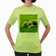 Bedlington Terrier Sleeping Women s Green T-Shirt