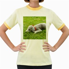 Bedlington Terrier Sleeping Women s Fitted Ringer T-Shirts