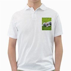 Bedlington Terrier Sleeping Golf Shirts