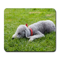Bedlington Terrier Sleeping Large Mousepads