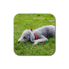 Bedlington Terrier Sleeping Rubber Coaster (Square)