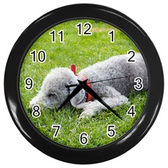Bedlington Terrier Sleeping Wall Clocks (Black)