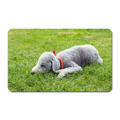 Bedlington Terrier Sleeping Magnet (Rectangular)