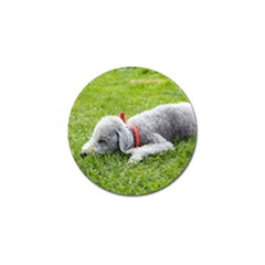 Bedlington Terrier Sleeping Golf Ball Marker