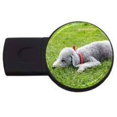 Bedlington Terrier Sleeping USB Flash Drive Round (2 GB)