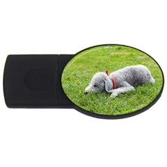 Bedlington Terrier Sleeping USB Flash Drive Oval (1 GB)