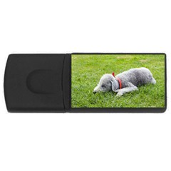 Bedlington Terrier Sleeping USB Flash Drive Rectangular (2 GB)