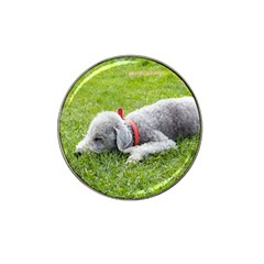 Bedlington Terrier Sleeping Hat Clip Ball Marker (4 pack)