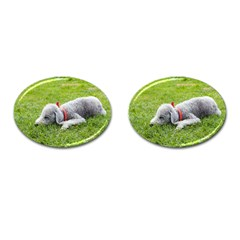 Bedlington Terrier Sleeping Cufflinks (Oval)