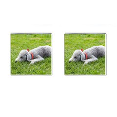 Bedlington Terrier Sleeping Cufflinks (Square)
