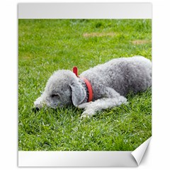Bedlington Terrier Sleeping Canvas 16  x 20