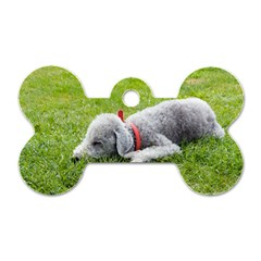 Bedlington Terrier Sleeping Dog Tag Bone (One Side)