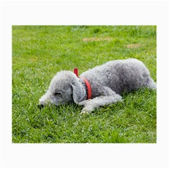 Bedlington Terrier Sleeping Small Glasses Cloth (2-Side)