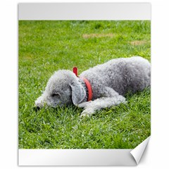 Bedlington Terrier Sleeping Canvas 11  x 14