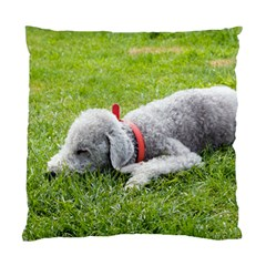Bedlington Terrier Sleeping Standard Cushion Case (Two Sides)